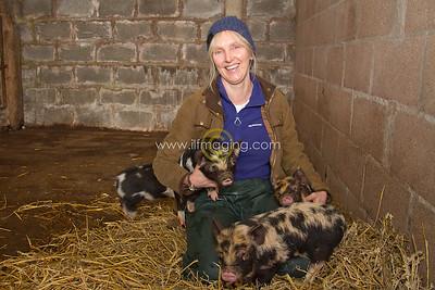 17 ILF Mar Shankend Pigs 0004