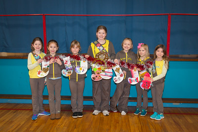 17 ILF Nov Brownie Shield Winners 0002