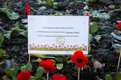 17 ILF Nov Remembrance Sunday 0014
