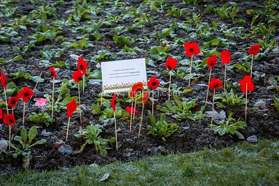 17 ILF Nov Remembrance Sunday 0015