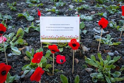 17 ILF Nov Remembrance Sunday 0013
