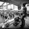 091Mahler Photography - Hawk Alley__M7A2448