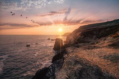 Marin Headlands XI