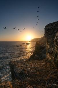 Marin Headlands IV
