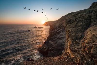 Marin Headlands II