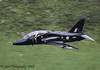 XX261 (Unmarked) Hawk T.1 - 15th August 2008.