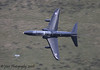 XX176/'176' (19(R) SQN marks) Hawk T.1 - 17th December 2008.