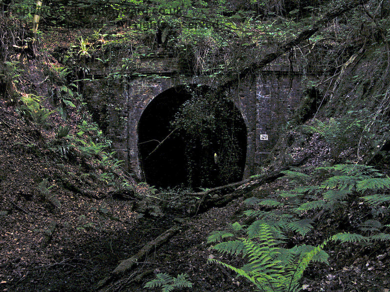 The northern portal of the abandoned Badgers Oak Tunnel.  The.tunnel is only of sufficient bore for a single track and curves slightly at the southern end.  A chink of light can just be seen from the far end of the tunnel.  31.05.2004.   At the time of the visit this was a dangerous environment and a hard hat area.  Visitors needed to be suitably equipped. There were overhanging and unstable trees, the ground was covered by a deep sludge, and the tunnel was waterlogged.  It was unsafe to enter.