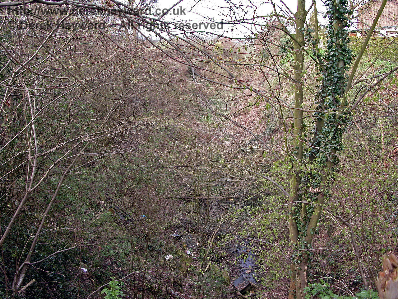 Looking north along the northern cutting leading towards Horsmonden Tunnel from above the tunnel portal.  12.04.2004