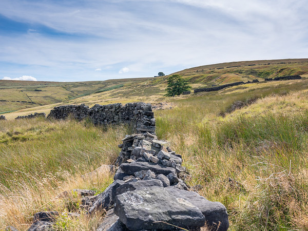 Dry Stone wall, near Lower Withens