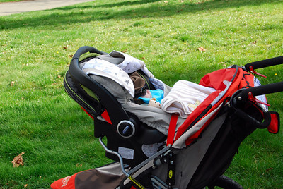 out for a walk trying out the new Bob Stroller