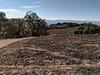 Hayfield Landscape