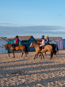 """Horses and Beach Huts"""