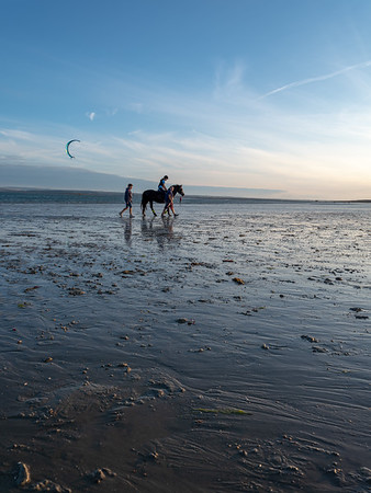 """Horse and Kite Surfer"""