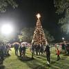 The 2016 Kyle Tree Lighting