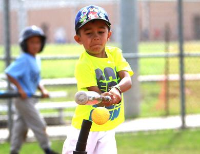 Lobo baseball camp 2017