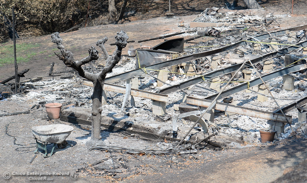 . Not much is left behind after a fire as Department of Toxic Substances Control and representatives from NRC search the ashes of homes burned during the Wall Fire for toxic substances and hazardous waste Wed. Aug. 2, 2017. Out of 45 homes damaged in the Wall Fire, 42 were completely destroyed. (Bill Husa -- Enterprise-Record)