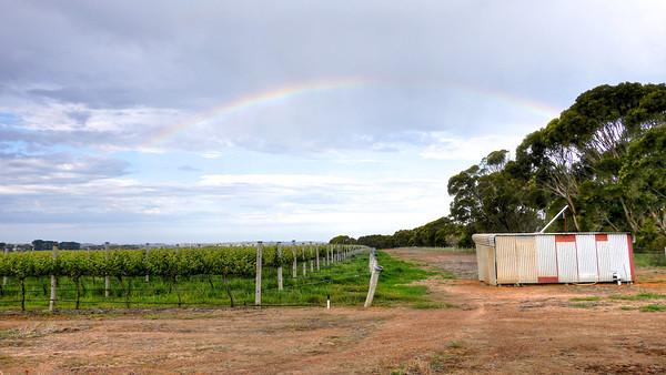 Shed Rainbow (1)