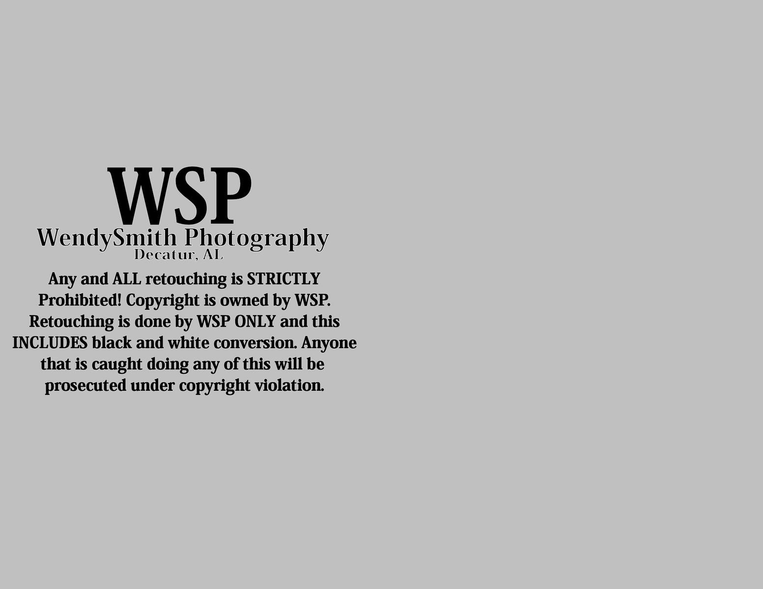 wspwebsite110