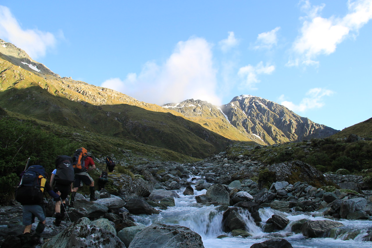 2010-01 (Five Passes - Fohn Saddle - Fiery Col - Cow Saddle - Park Pass - North Col)