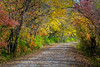 Katy Trail Fall IMG_3685 26.7x40in 300dpi