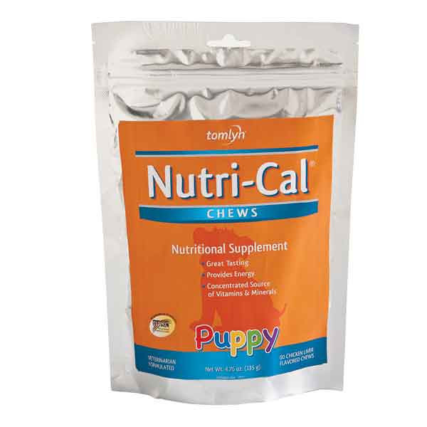 "NUTRI-CAL TREATS<br /> <br /> This is basically Nutri-cal in treat form! you should never use this as a replacement to the tube, but it is a tasty and healthy snack for your pup!<br /> <br /> <br /> <a href=""http://www.petedge.com/product/Tomlyn-Nutri-Cal-Soft-Chews-for-Dogs-and-Puppies/58242.uts"">http://www.petedge.com/product/Tomlyn-Nutri-Cal-Soft-Chews-for-Dogs-and-Puppies/58242.uts</a>"