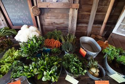 Ethos Farm Days Featuring Gene Baur