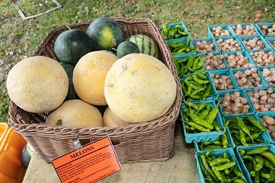 081719 Ethos Farm Day 19-30 023