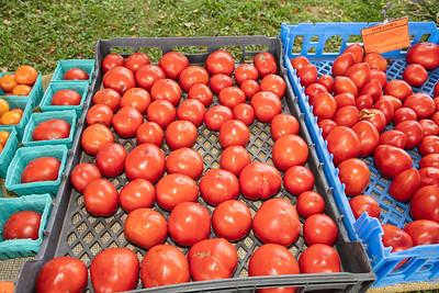 081719 Ethos Farm Day 19-30 024