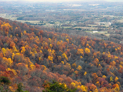 Color Below the Northern Overlook