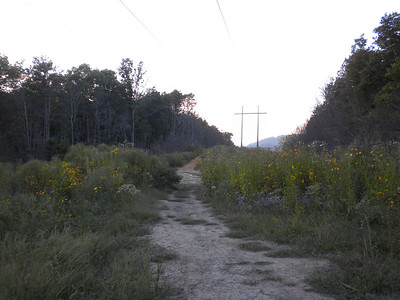 Power Lines Trail at Royal Blue