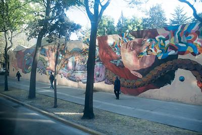 150210 - Heartland Alliance Mexico - 4213