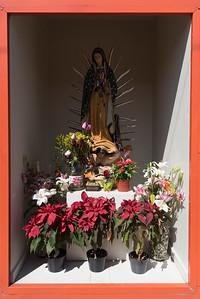 150210 - Heartland Alliance Mexico - 4276