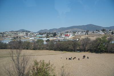 150210 - Heartland Alliance Mexico - 4249