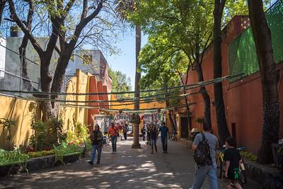 150208 - Heartland Alliance Mexico - 2699