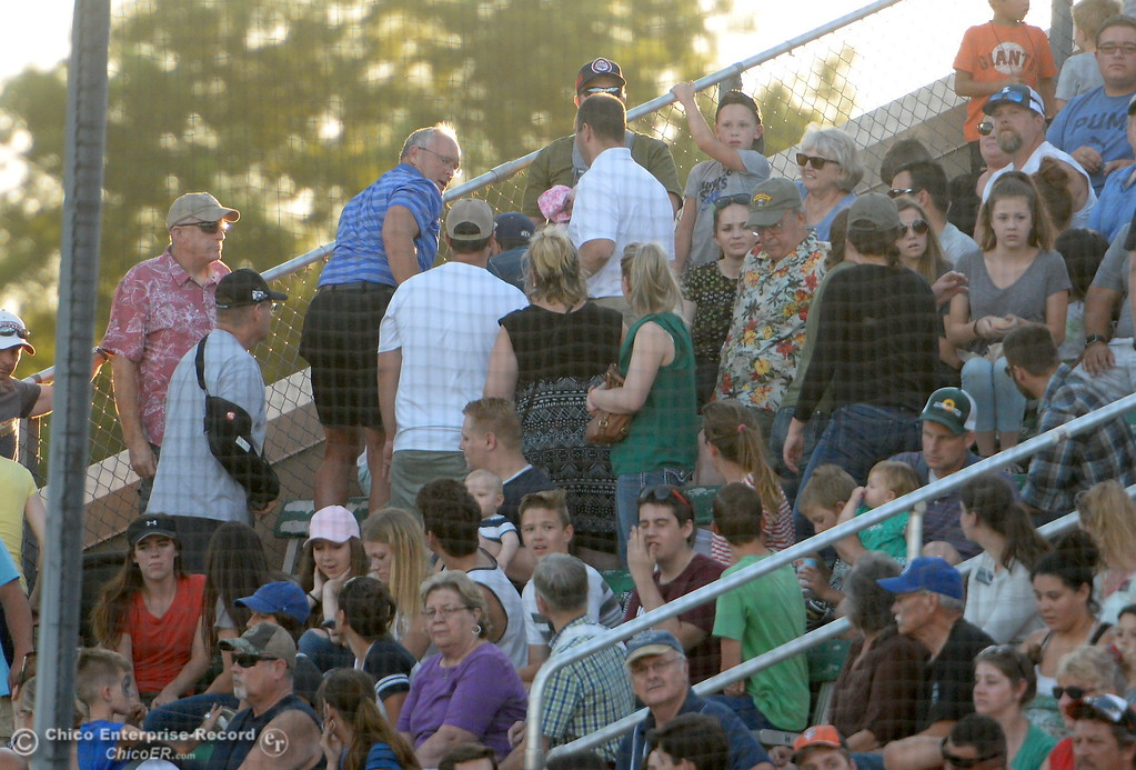 . A fan gets attention after a hard foul ball veered over the net during the Chico Heat vs All Stars baseball game at Nettleton Field in Chico, Calif. Mon. July 24, 2017.  (Bill Husa -- Enterprise-Record)