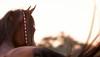 Heathcott Arabians : 72 galleries with 1233 photos