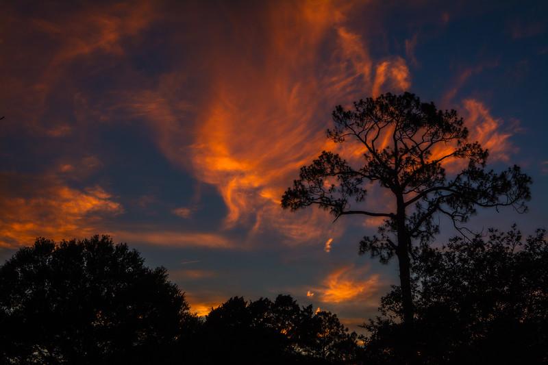 SRd1705_0355_Sunset