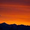 SRd1902_9499_Sunrise_at300