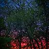 SRf2105_4252_Sunrise