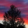 SRd1905_9918_Sunrise_at300