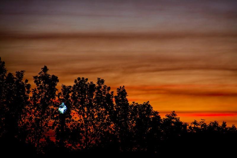 SRf2006_2578_Sunrise