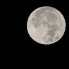 SRc1611_7965_SuperMoon