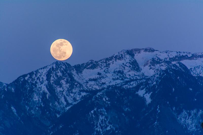 SRb1504z_3740_Full_Moon