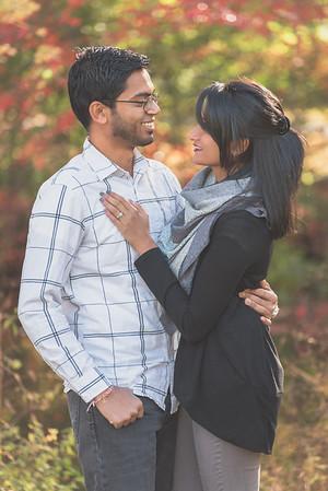 Heena + Manthan Engagement Photos 11-18-15