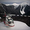 CMH Silvertip Weeks 10 and 11 2009