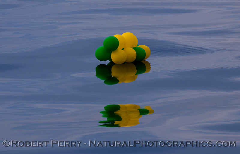 balloon debris cluster on water 2012 01-14 SB Channel-a-014