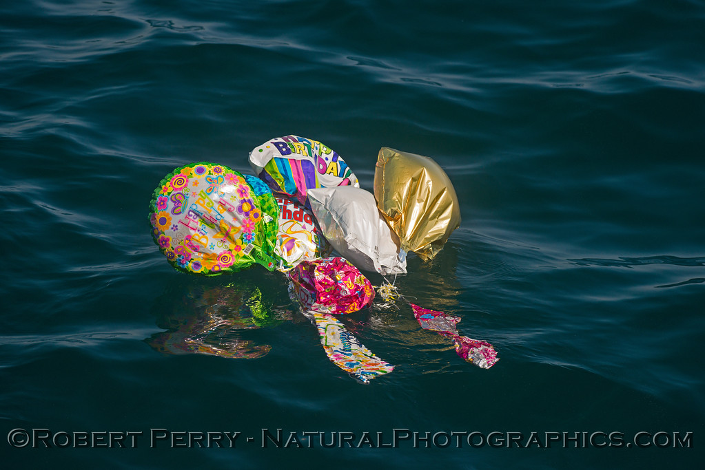 balloon debris 2014 04-14 SB Channel-199