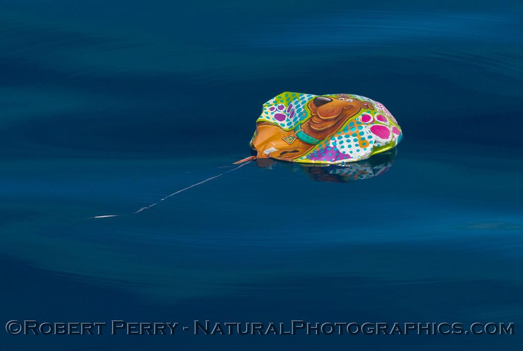 Orange Scooby Doo balloon debris on surface 2014 10-15 SB Channel-006