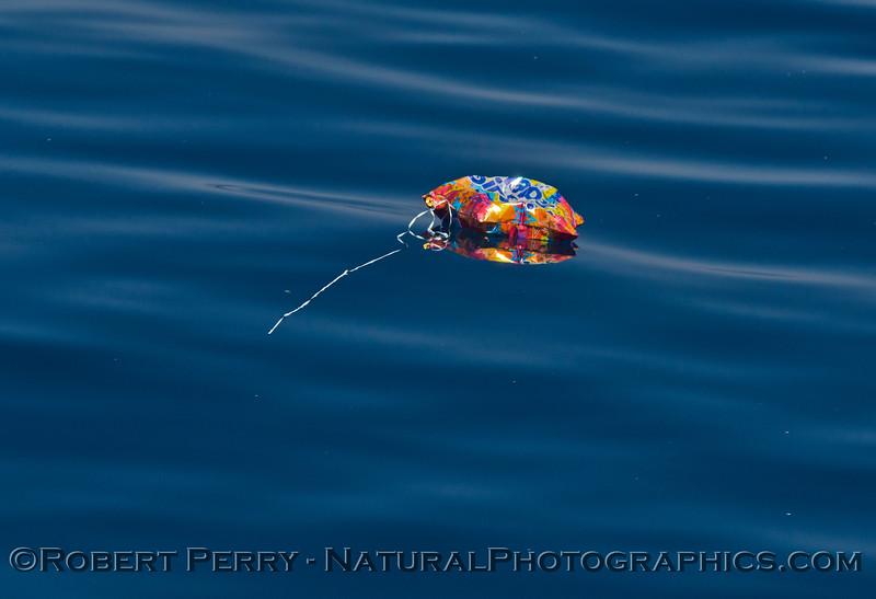 balloon mylar 2014 10-05 SB Channel-001